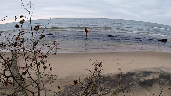 Thanksgiving storm resurfaces a mystery from the depths of Lake Michigan